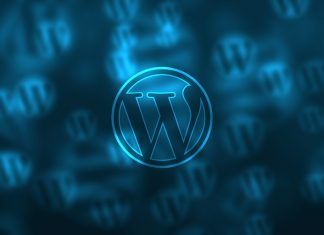 Errores de WordPress: Plugin Won´t Delete y HTTP 403 ¡Aquí la solución!