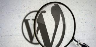 Cómo añadir buscador al menú de WordPress